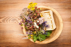 Medicinal herbs and flowers Royalty Free Stock Photography