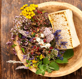 Medicinal herbs, flowers and honey Royalty Free Stock Image