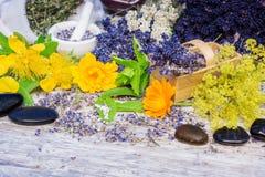 Medicinal herbs, globules, flowers, healing stones Stock Photos
