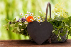 Medicinal herbs, Healing plants. In a basket Royalty Free Stock Image