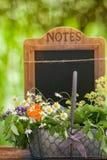 Medicinal herbs, Healing plants Stock Photos