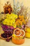 Medicinal herbs with honey Royalty Free Stock Photos