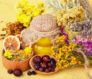 Medicinal herbs with honey Stock Images