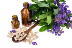 Medicinal herbs, honey,  natural capsules and pills in medicine.  Royalty Free Stock Photo