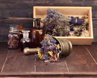 Medicinal herbs mortar and bottles tincture. Royalty Free Stock Images