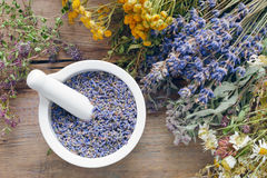 Medicinal herbs and mortar filled with lavender flowers. Royalty Free Stock Photo