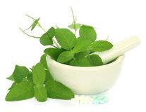 Medicinal herbs with mortar and pestle Royalty Free Stock Photo