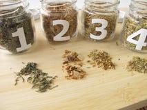 Medicinal herbs samples Royalty Free Stock Images