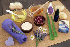 Medicinal Herbs for Skincare Royalty Free Stock Photos
