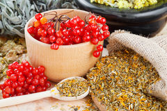 Medicinal herbs on table. Medicinal herbs and healthy berries on table, herbal medicine Stock Images
