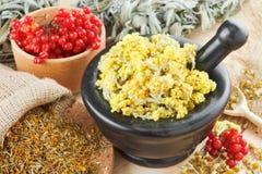 Medicinal herbs on table Stock Photos