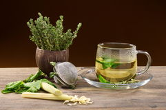 Medicinal herbs for tea. Royalty Free Stock Images