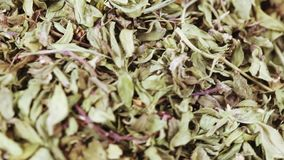 Dried thyme in bulk. Medicinal herbs thyme in bulk stock footage