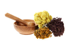 Medicinal herbs on the white background Stock Images