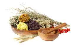 Medicinal herbs on the white background Stock Photo