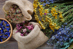 Medicinal herbs, wooden mortar and two bags of dry flowers Royalty Free Stock Photo