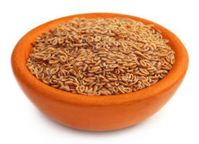 Medicinal Isabgol or psyllium husks Stock Photography