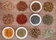 Medicinal and Magical Herbs Stock Photos