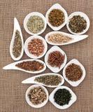 Medicinal and Magical Herbs Royalty Free Stock Photos