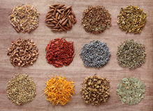 Medicinal and Magical Herbs Royalty Free Stock Images