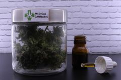 Medicinal marijuana buds and cannabis oil royalty free stock photography