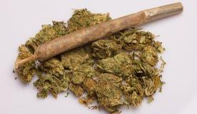 Medicinal marijuana & joint. On white in a studio Stock Photo