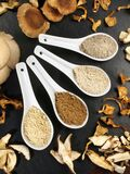 Medicinal Mushrooms and Mushroom Powder - Healthy Nutrition
