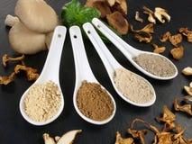 Medicinal Mushrooms - Healthy Nutrition stock photos