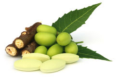 Medicinal neem fruits with tablets Stock Photo