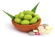 Medicinal neem fruits with tablets Stock Photos