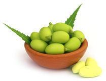 Medicinal neem fruits with tablets Stock Images