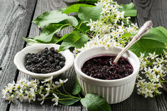 Medicinal plant - bird cherry (Prunus padus). Flowering branches, dried berries and jam on a white wooden background. Selective focus Royalty Free Stock Photo