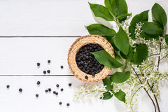 Medicinal plant bird cherry Prunus padus. Flowering branches and dried berries in a wicker bowl on a white wooden table. Top view Stock Images