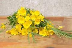 Medicinal plant - Creeping buttercup Stock Photos