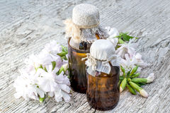 Medicinal plant Saponaria officinalis and pharmaceutical bottle Royalty Free Stock Photos