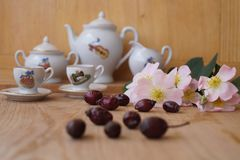 Medicinal plants - eglantine Stock Photo