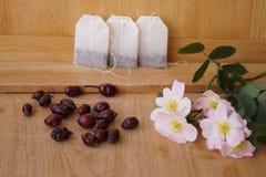 Medicinal plants - eglantine Royalty Free Stock Images