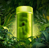 Medicinal Plants. And jungle medicine discoveries as a health care symbol of natural herbal remedies found in a rain forest as a pharmacy metaphor of the Stock Image
