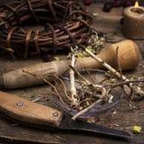 Medicinal root Stock Photo