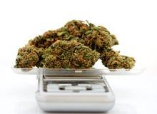 medicinal scale för marijuana arkivbilder