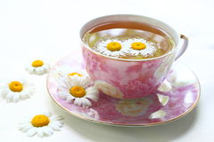medicinal tea Royaltyfri Fotografi