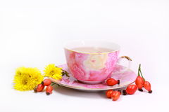 Medicinal Tea Stock Photo