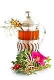 medicinal tea royaltyfri foto