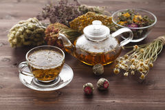 Medicinal Tea In Glass Cup With Dried Herb In Bowl Stock Image