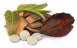 Medicinal Terminalia arjuna with pills. Over white background royalty free stock photography
