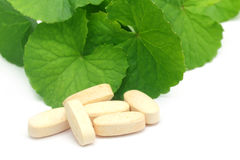 Medicinal thankuni leaves with pills Royalty Free Stock Photos