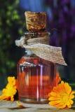 Medicinal tincture from flowers of calendula stock photos