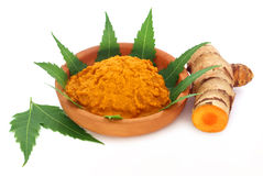 Medicinal turmeric paste with neem leaves Royalty Free Stock Photo