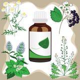 medicinal vektor för flaskörtillustration vektor illustrationer
