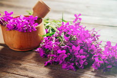 Medicinal willow-herb flowers in mortar Stock Photo